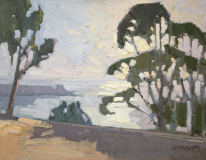 Eucalyptus Above La Jolla