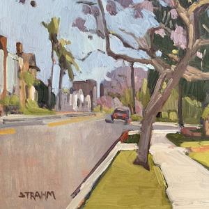 Jacaranda Trees Along First Avenue